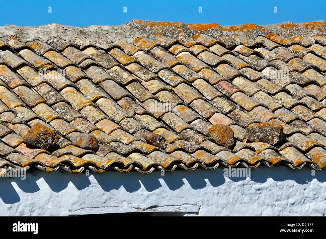 Come Dipingere Vecchie Tegole tetto di tegole in sicilia, italia foto & immagine stock