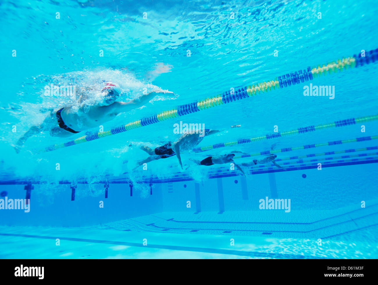 Riprese subacquee di quattro maschi thletes competere in piscina Immagini Stock
