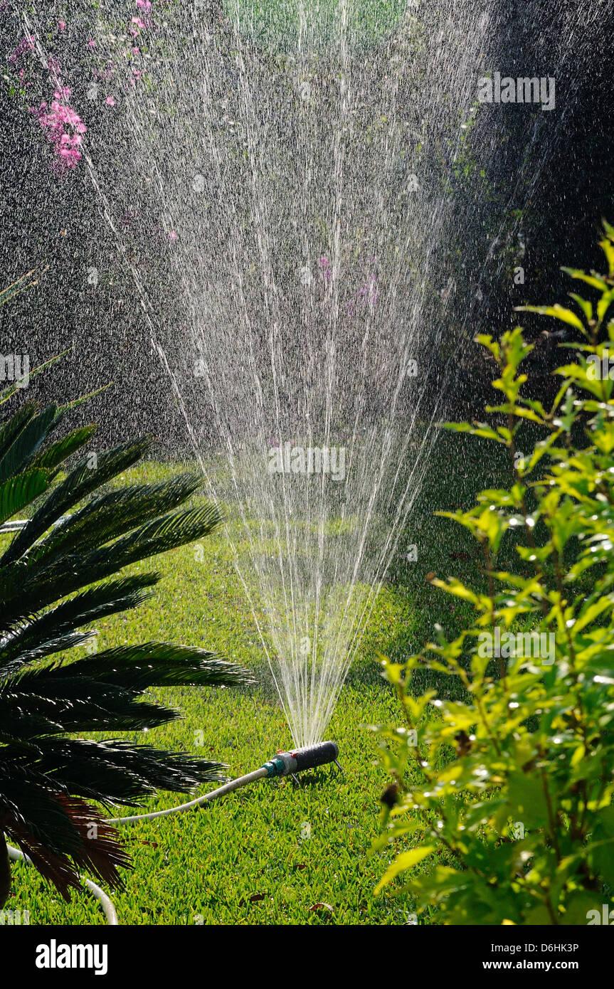 Giardino oscillante sprinkler, Costa del Sol, Andalusia, Spagna, Europa occidentale. Foto Stock
