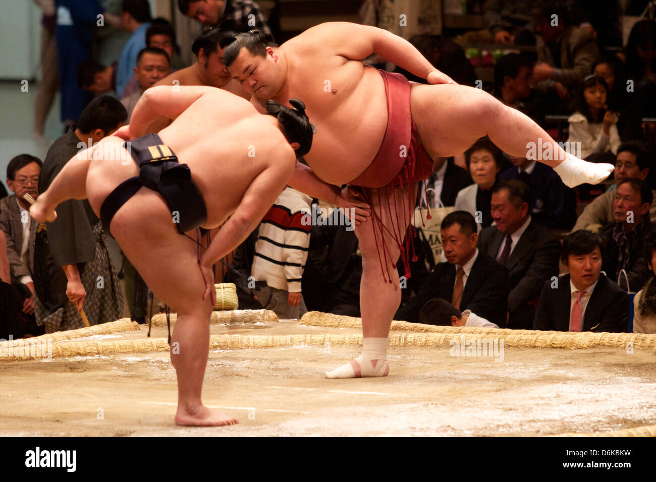 Sumo wrestling concorso al Kokugikan stadium, Tokyo, Giappone, Asia Immagini Stock