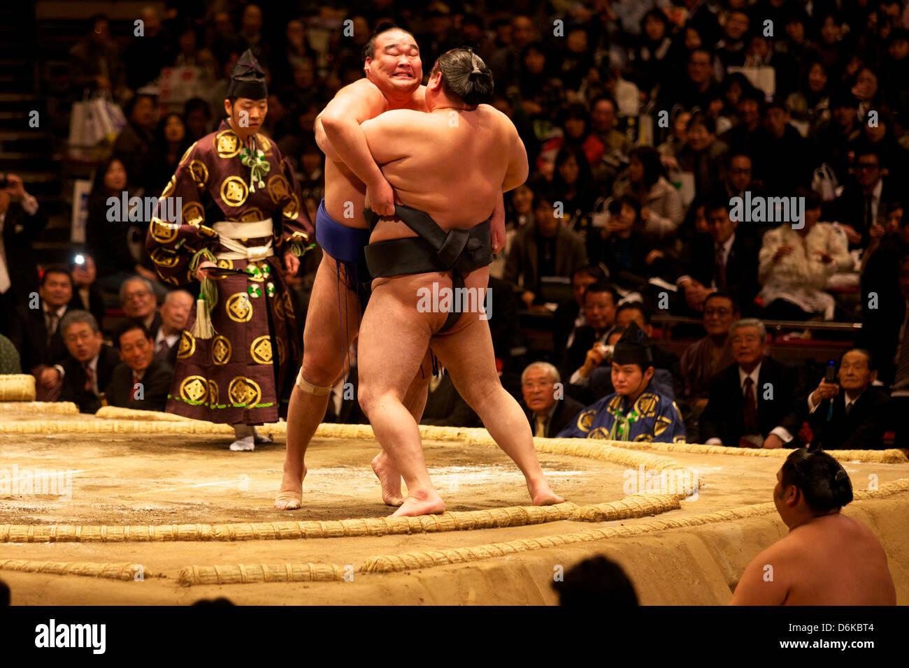 Due lottatori di sumo spingendo molto per mettere il loro avversario fuori del cerchio, sumo wrestling concorrenza, Immagini Stock