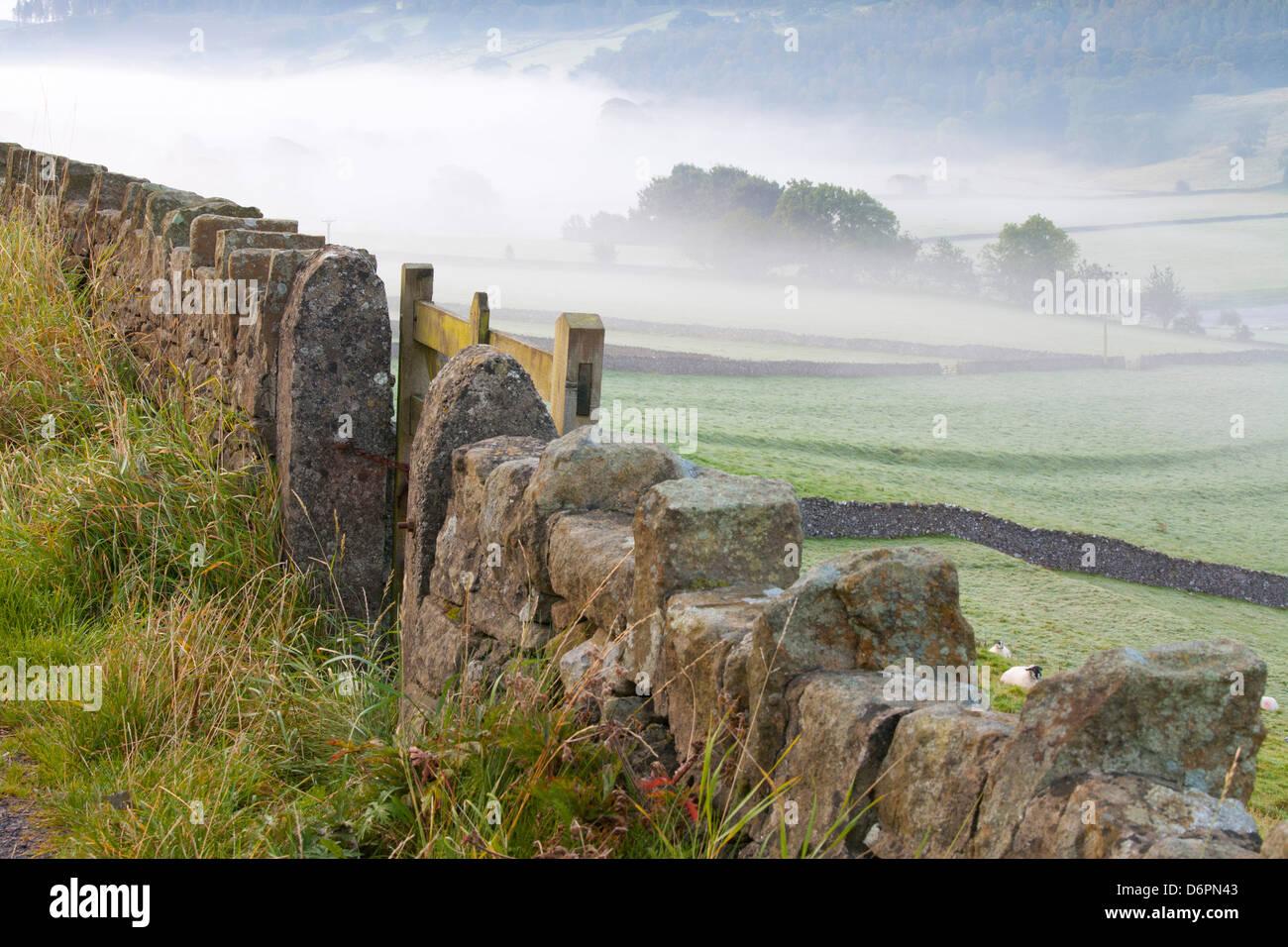 Recinzione in pietra, Burnsall, Yorkshire Dales National Park, il Yorkshire, Inghilterra, Regno Unito, Europa Immagini Stock