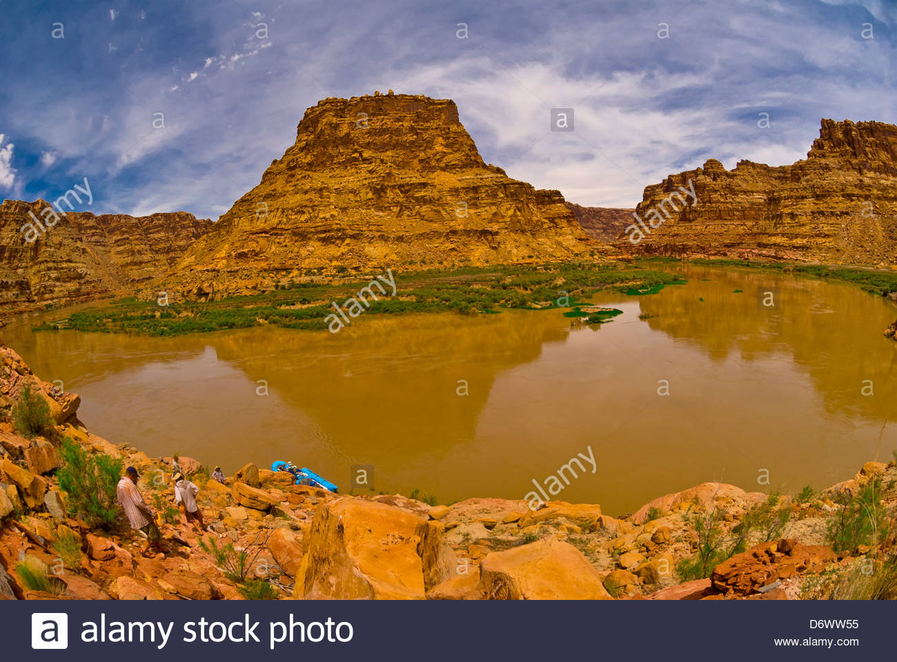 Canyon di pecora (cercando di fronte alla rupe di miglio Bend), il Fiume Colorado, Glen Canyon National Recreation Immagini Stock