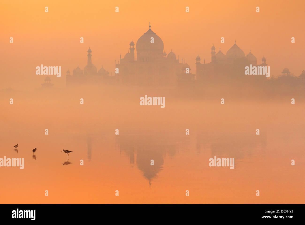 Skyline del Taj Mahal, Agra, Uttar Pradesh, India Immagini Stock