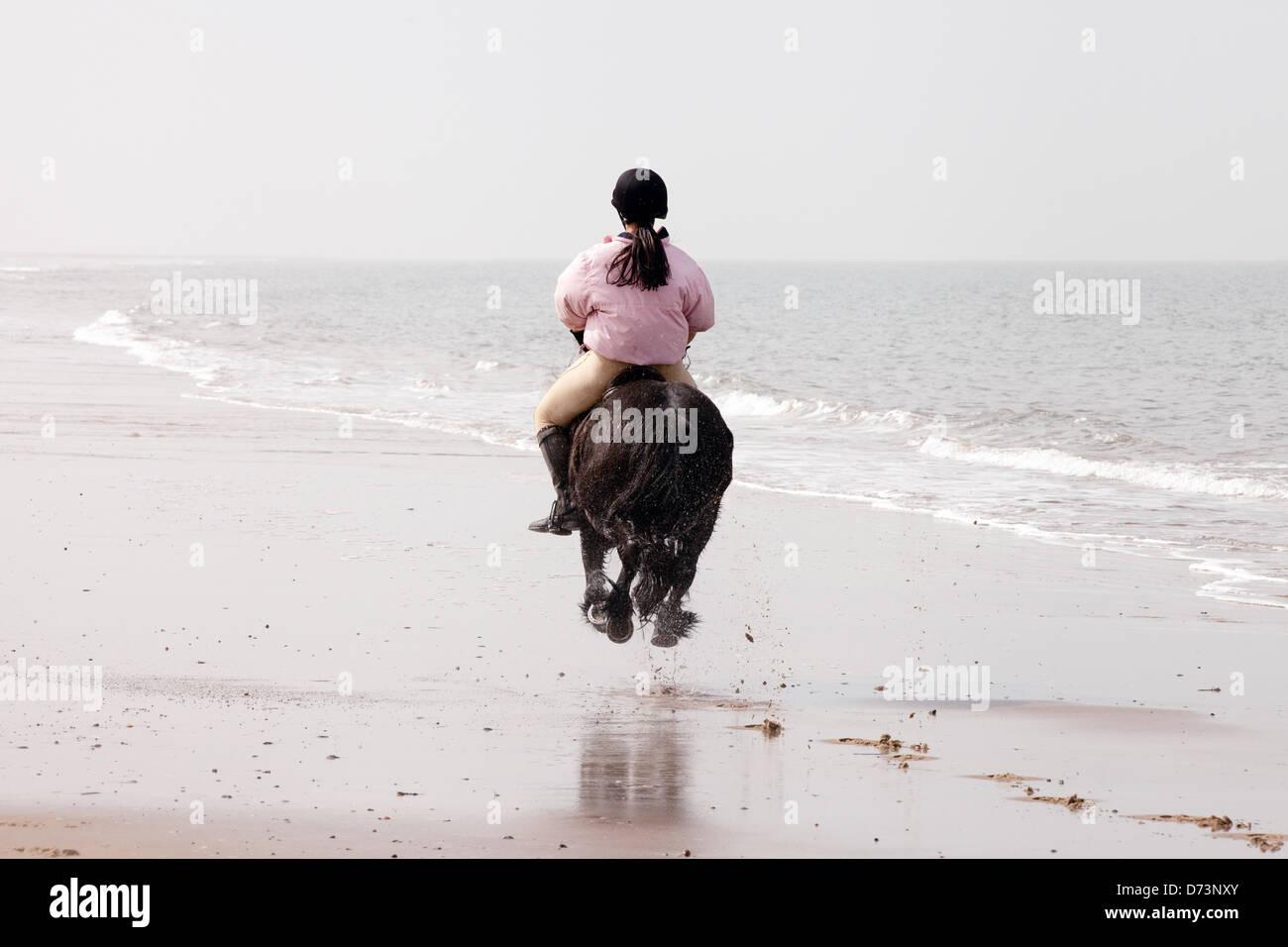 Una giovane donna sul suo cavallo al galoppo lontano in distanza, Holkham Beach, NORFOLK REGNO UNITO Immagini Stock