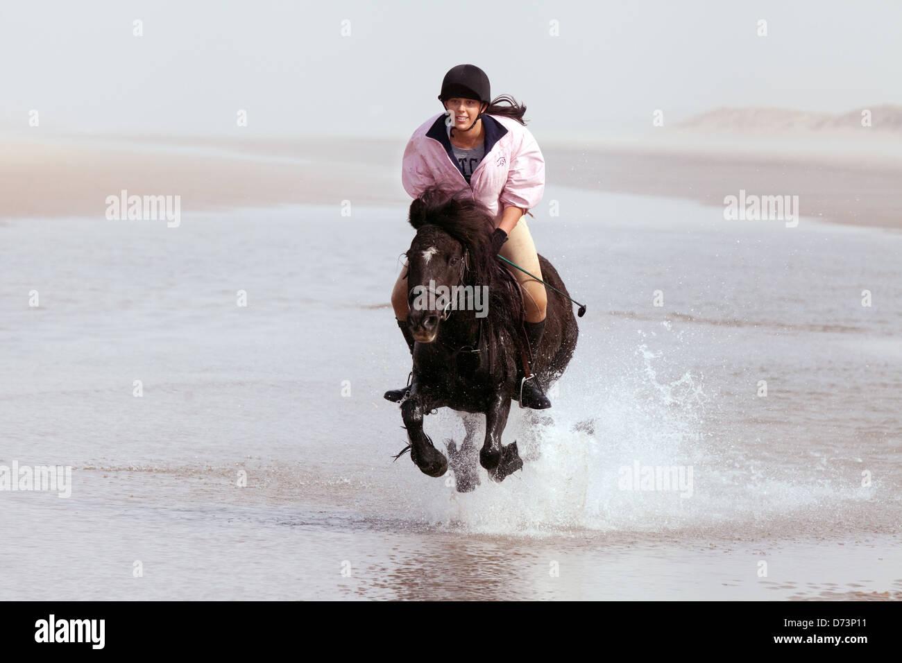 Una giovane donna in sella il suo cavallo su una spiaggia di sabbia, spiaggia Holkham Norfolk East Anglia England Immagini Stock