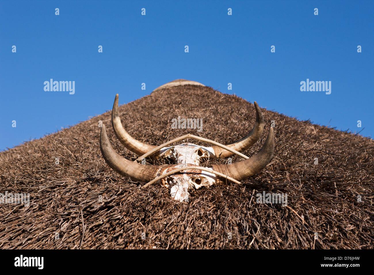 Tetto della capanna in Xhosa Village, Costa Selvaggia, cappuccio Orientale, Sud Africa Immagini Stock