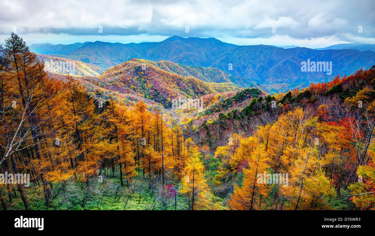 La gamma della montagna nel Parco Nazionale di Nikko in Nikko, Tochigi, Giappone. Immagini Stock