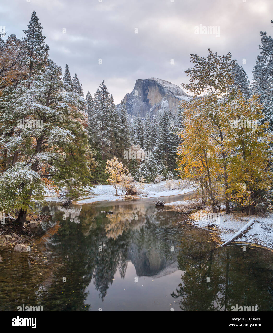 Parco Nazionale di Yosemite in California: Mezza Cupola riflettendo sul fiume Merced con neve fresca lungo le rive Immagini Stock