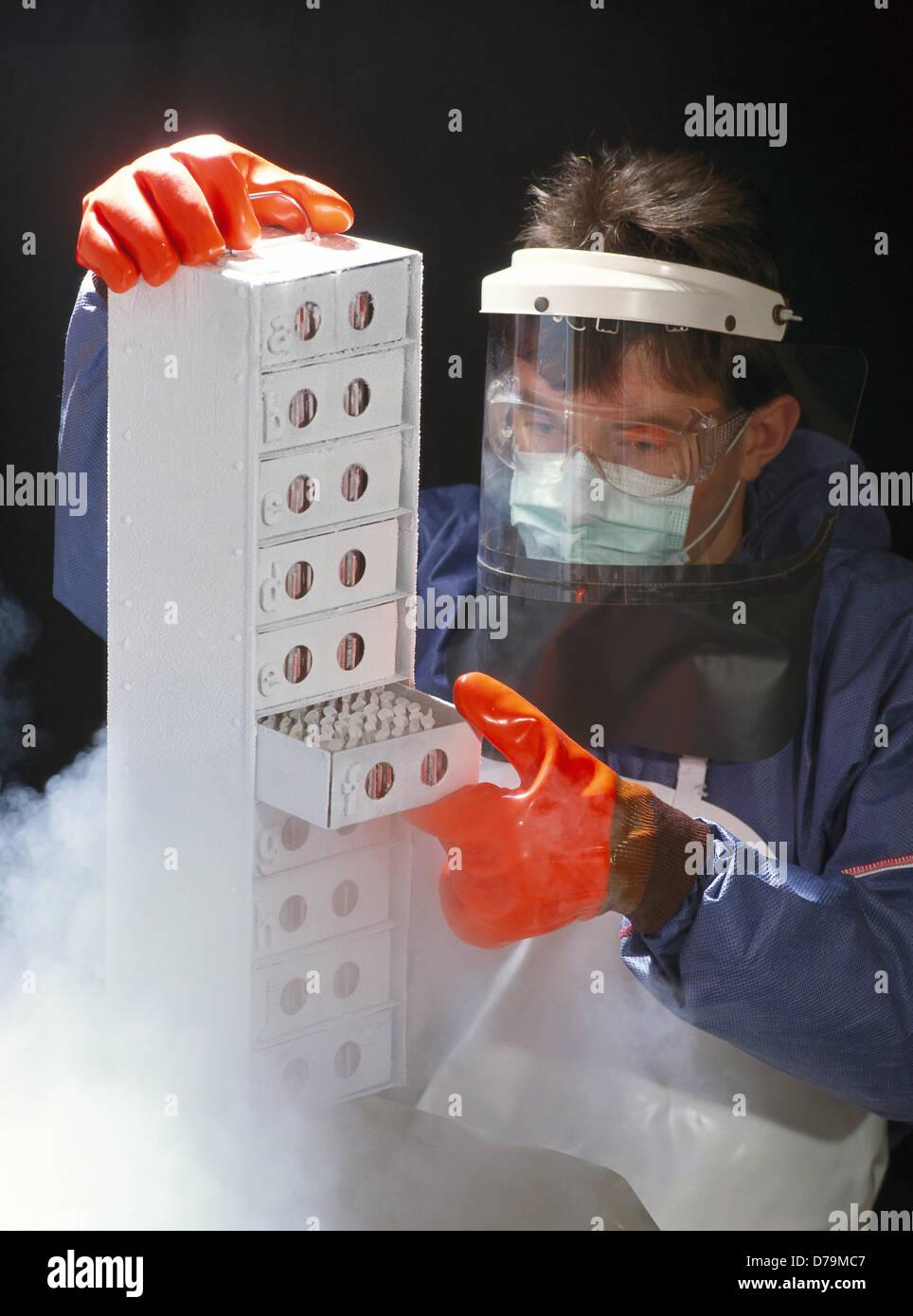 Ricercatore tenendo fuori le colture cellulari surgelazione contenitore Immagini Stock