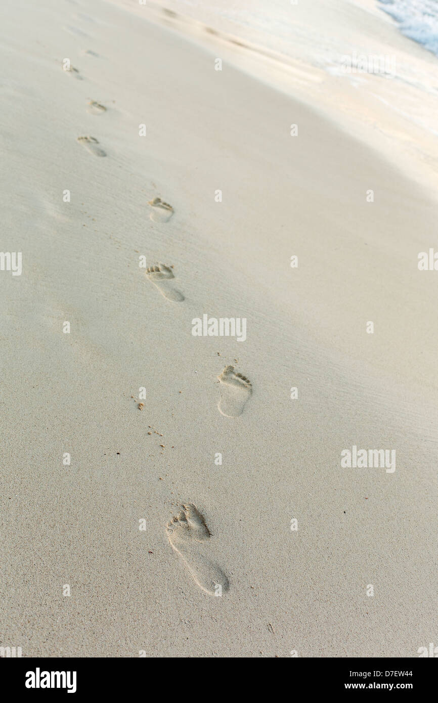 Impressioni di passi nella sabbia in spiaggia Immagini Stock