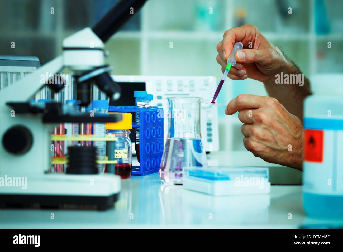 La ricerca biologica Immagini Stock