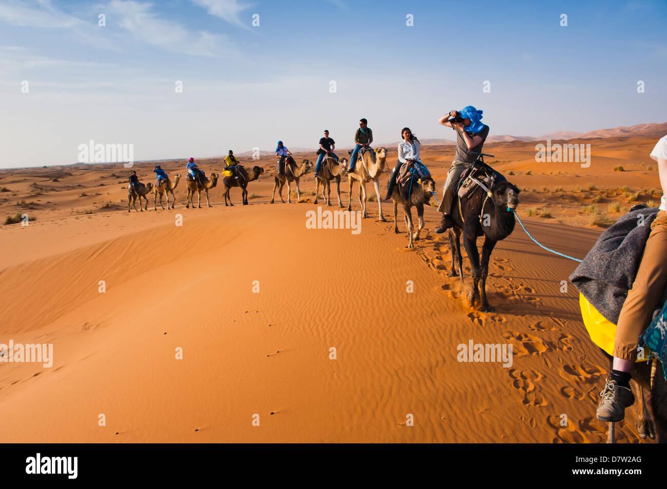 I turisti in una corsa in cammello nel Erg Chebbi Desert, Sahara Deserto vicino a Merzouga, Marocco, Africa del Immagini Stock
