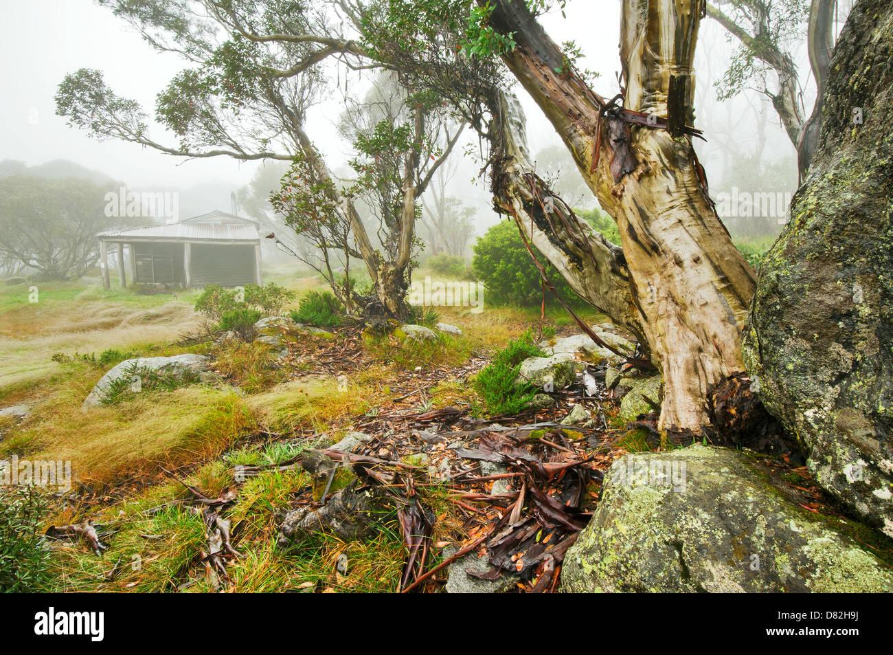 Bella Valle rifugio in alta paese di Victoria. Immagini Stock