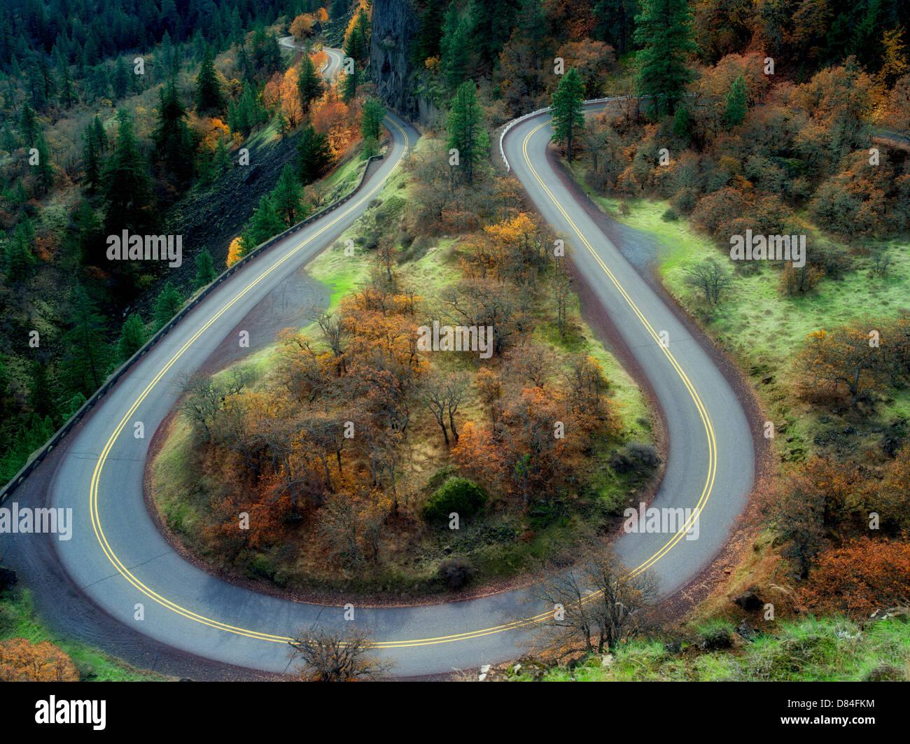 Strada con curve con i colori dell'autunno in Columbia River Gorge National Scenic Area. Oregon Immagini Stock