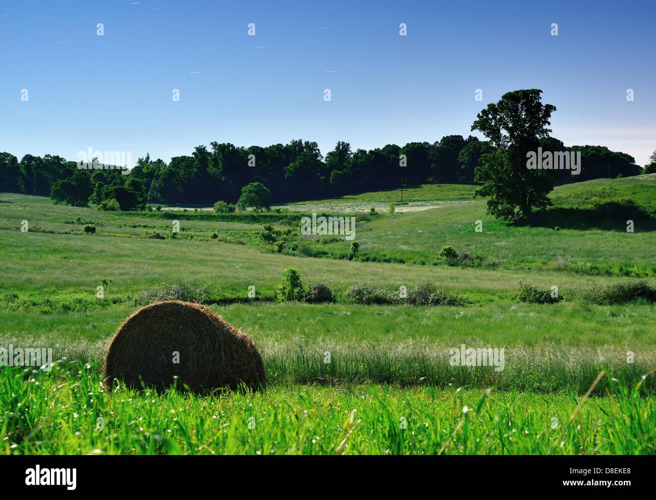 Moonlit terreni coltivati nel nord della Georgia, Stati Uniti d'America. Immagini Stock