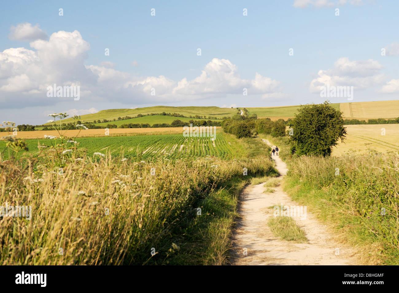 La Ridgeway vicino Wayland's Smithy verso Uffington Castle. Parte del 5000 anni di distanza lungo la via. Oxfordshire, Immagini Stock
