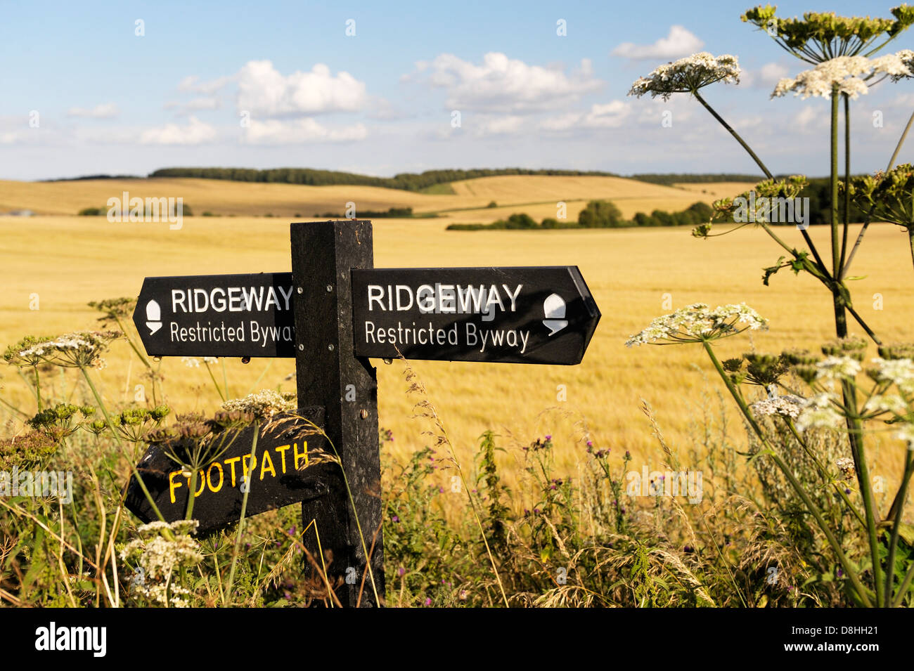 La Ridgeway. Segno su 5000 anni di distanza lungo il percorso visto tra Uffington Castle e Wayland's Smithy. Immagini Stock