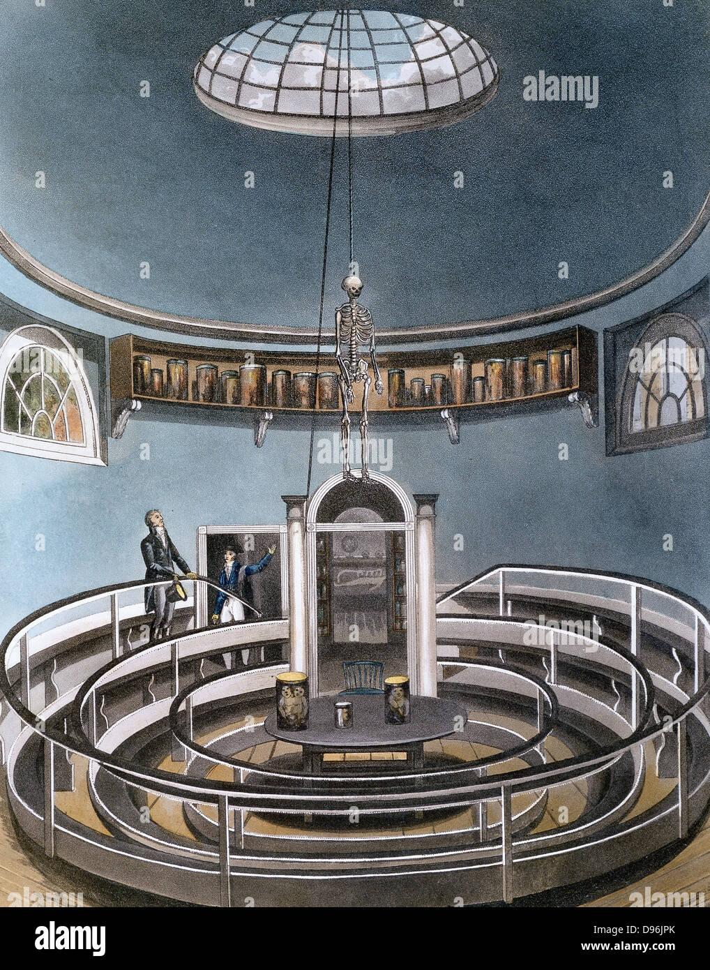 """Teatro di Anatomia' da Ackermann """" La storia dell'Università di Cambridge, Londra. 1815. La puntasecca Immagini Stock"""