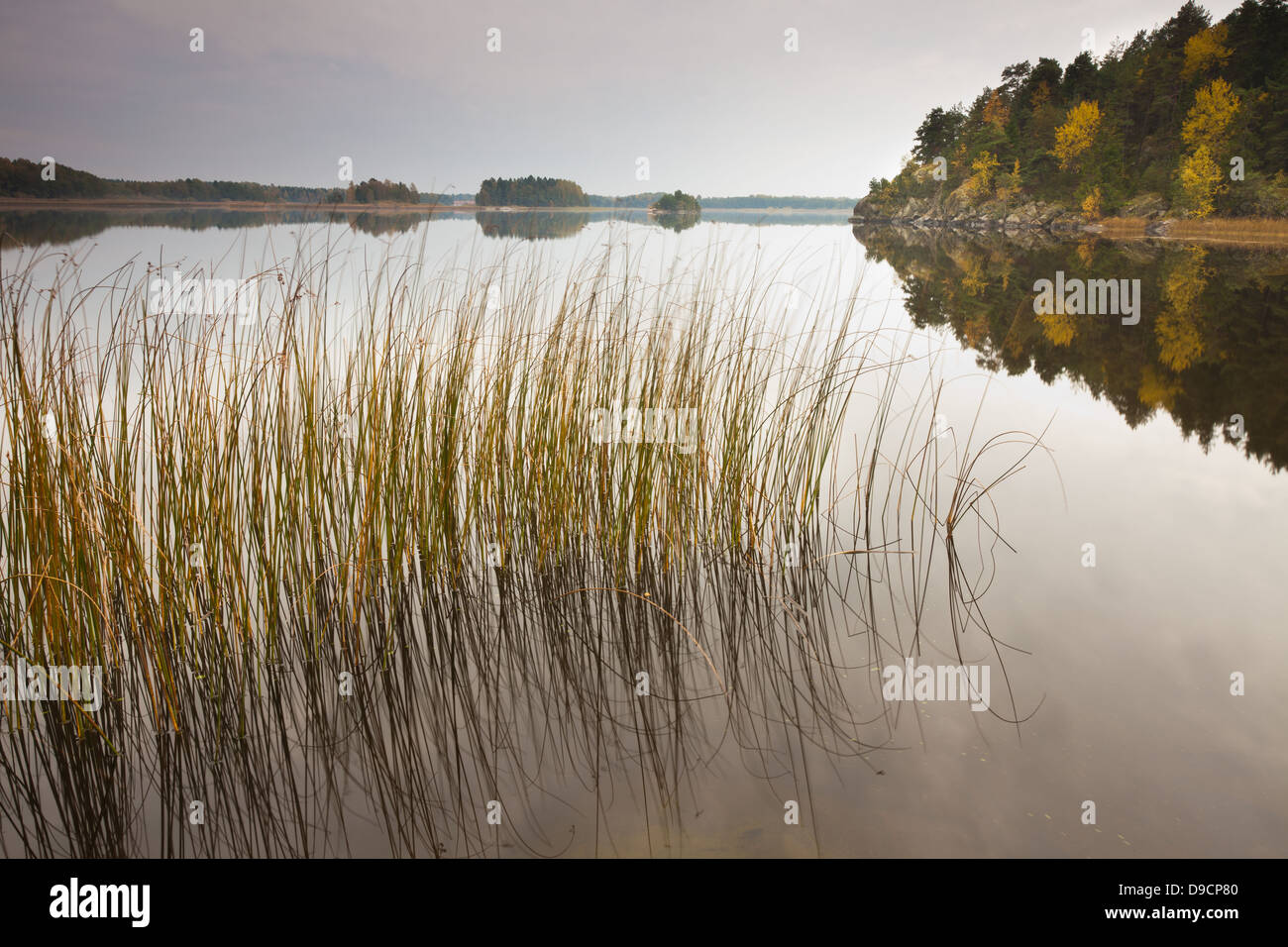 Tranquillo paesaggio autunnale a Hvalbukt nel lago Vansjø, Østfold fylke, Norvegia. Immagini Stock