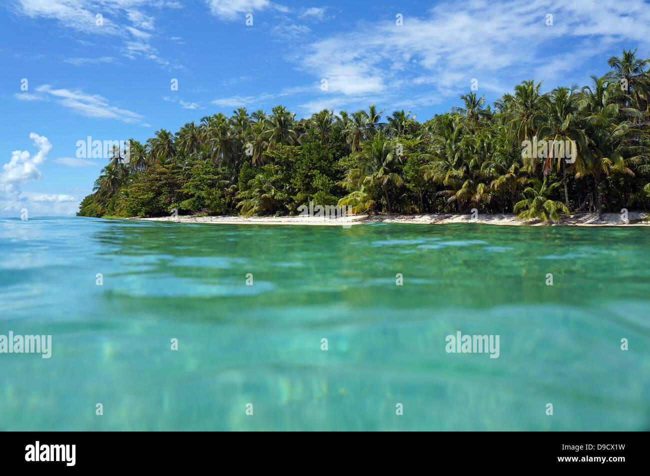 Vista dalla superficie di acqua su un isola tropicale spiaggia con vegetazione lussureggiante, Zapatillas isles, Immagini Stock