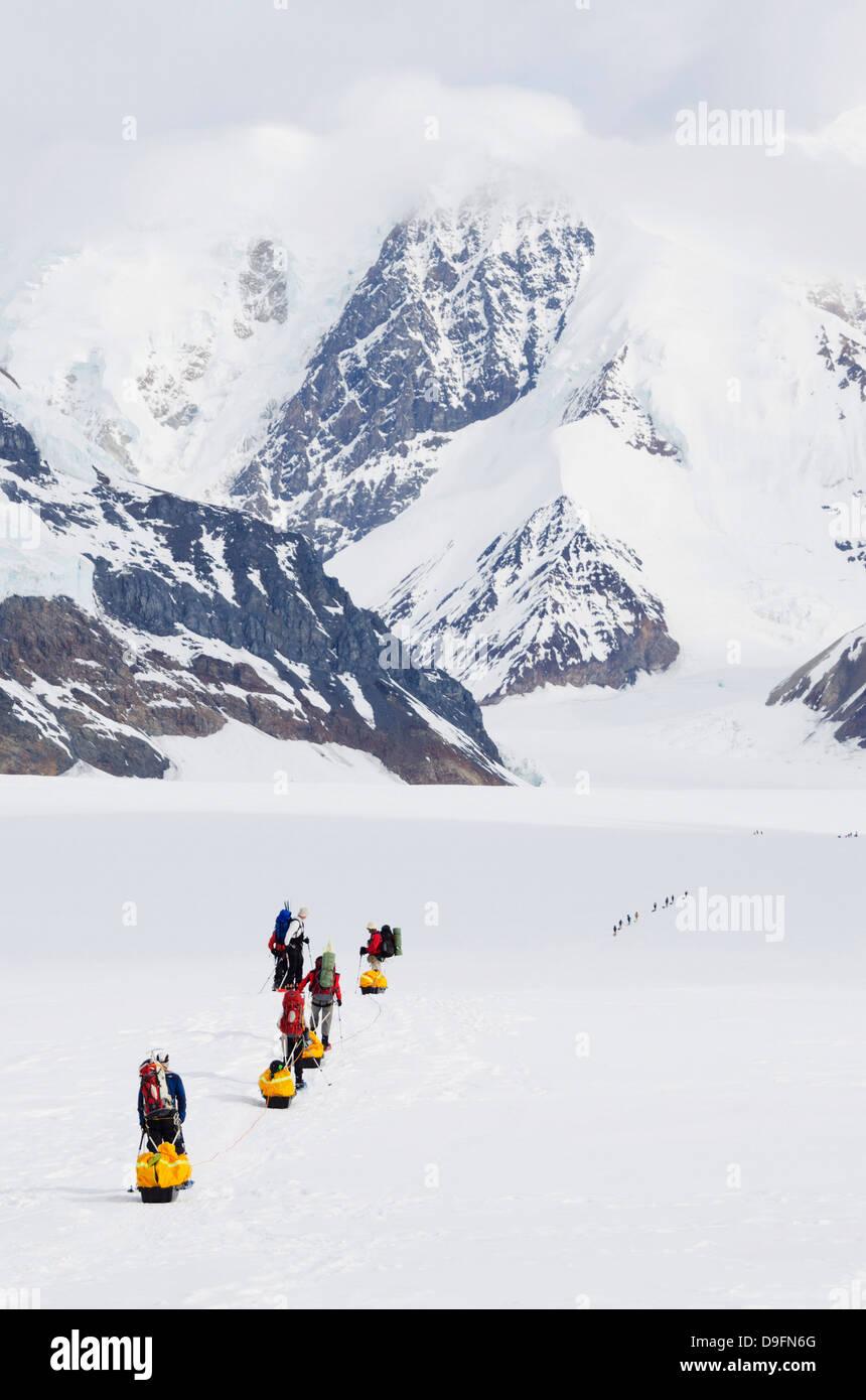 Escursione di alpinismo lasciando il campo base del Monte McKinley, 6194m, Parco Nazionale di Denali, Alaska, STATI Immagini Stock