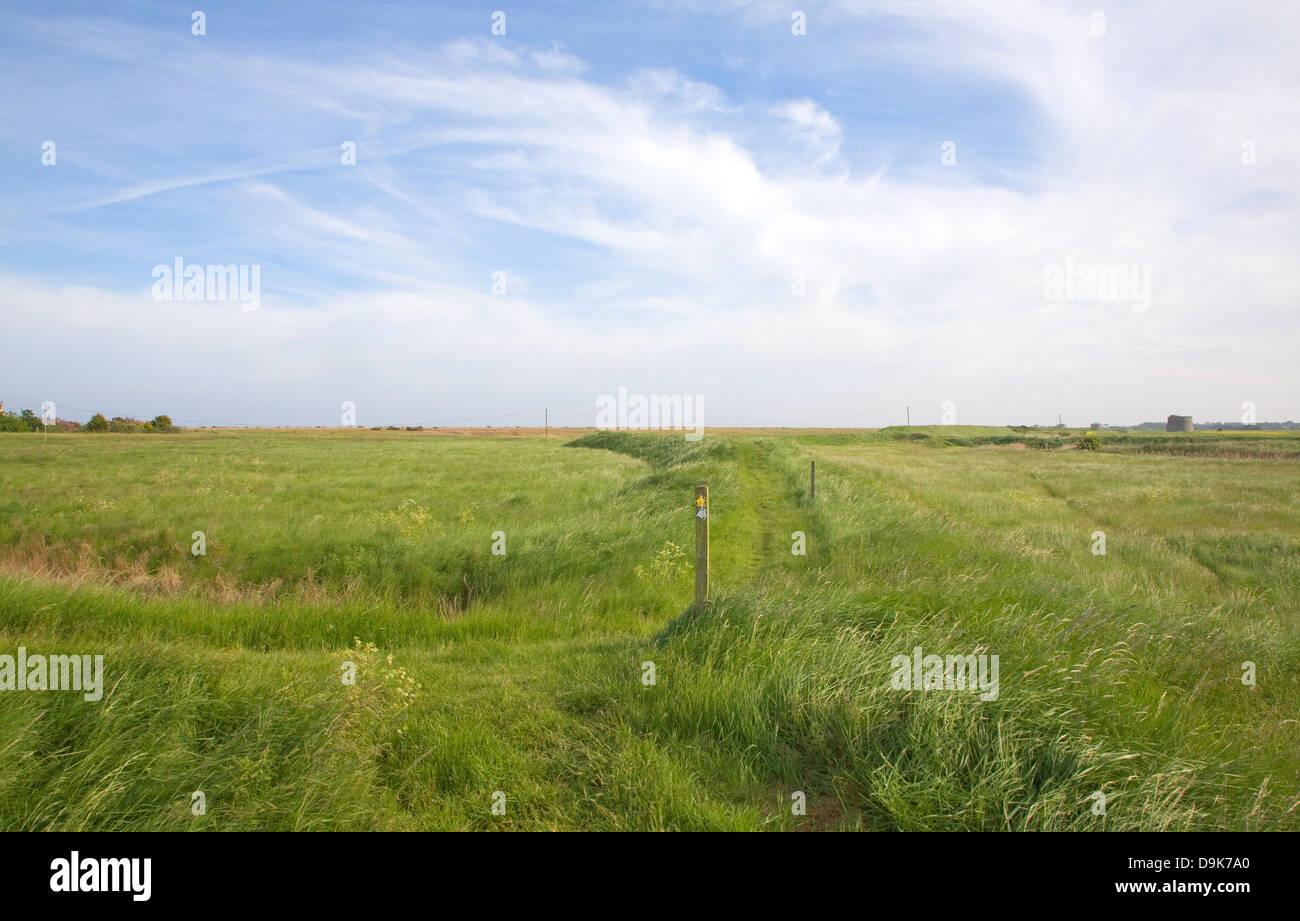 Vista del paesaggio di sentieri attraverso le paludi di pascolo vicino alla strada di ciottoli Suffolk in Inghilterra Foto Stock