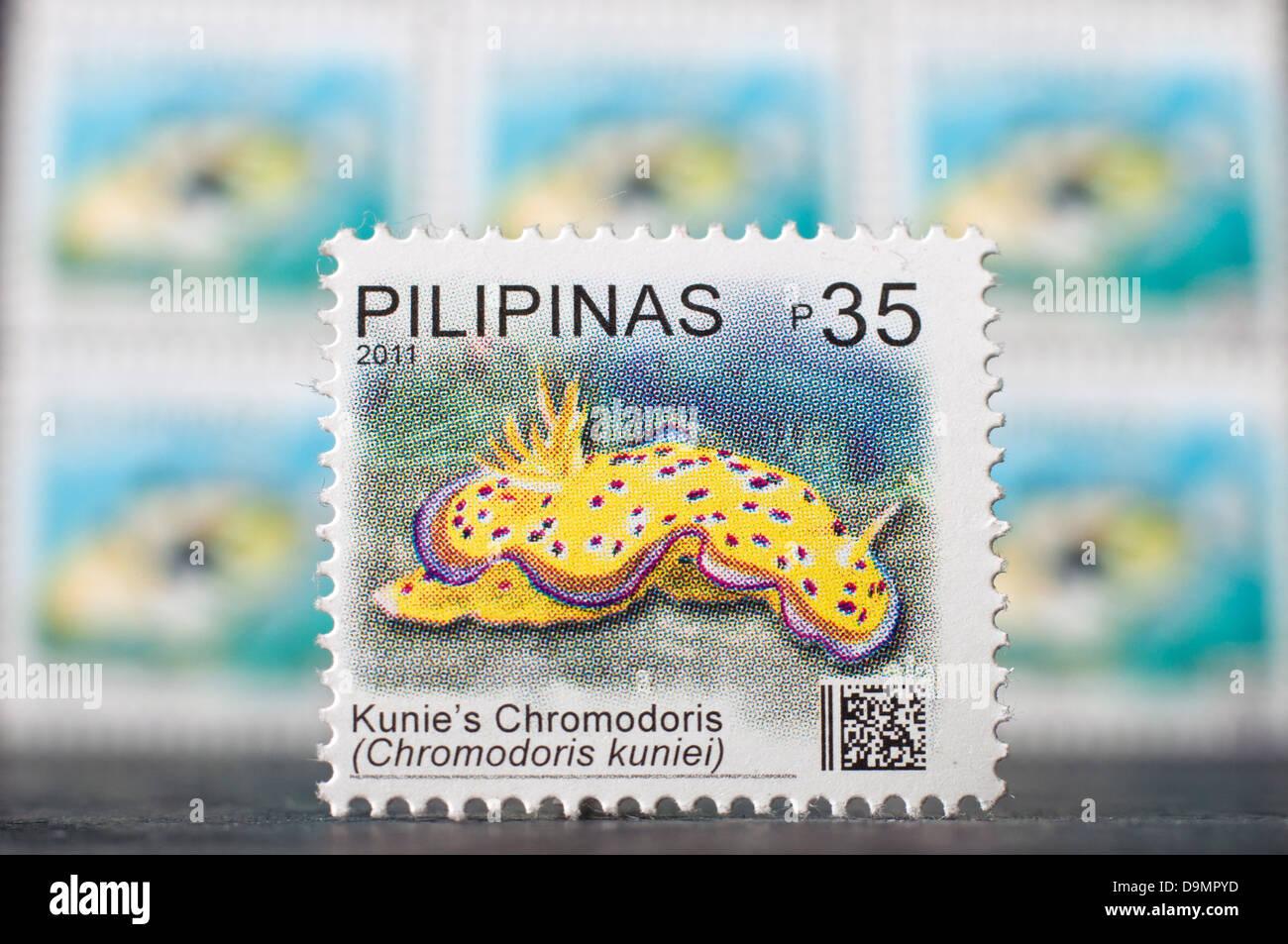 Filippine spedizione stampswith tema marino in studio di impostazione Immagini Stock
