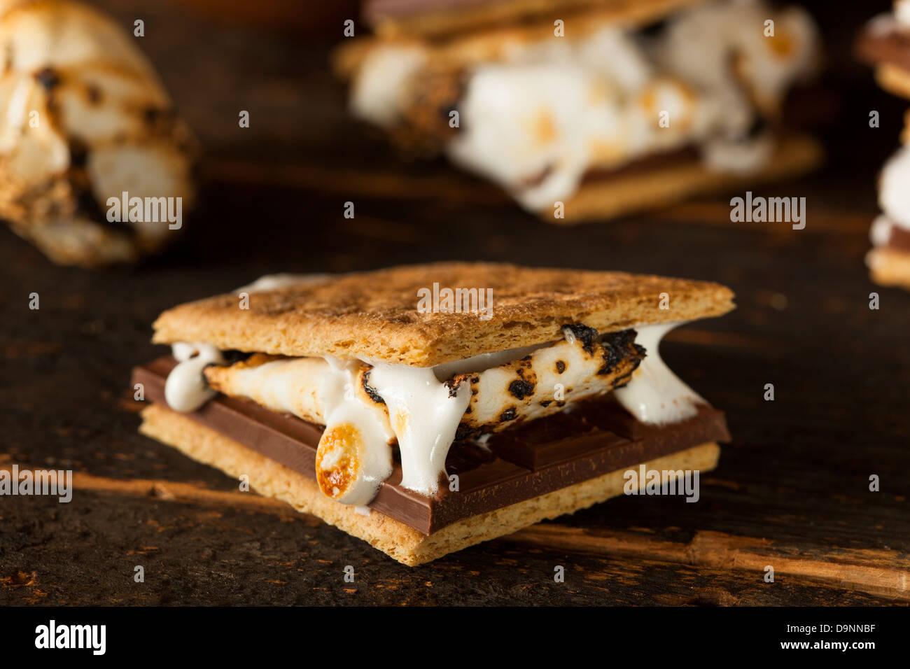 In casa s'mminerale con cioccolato e marshmallow su un cracker di Graham Immagini Stock