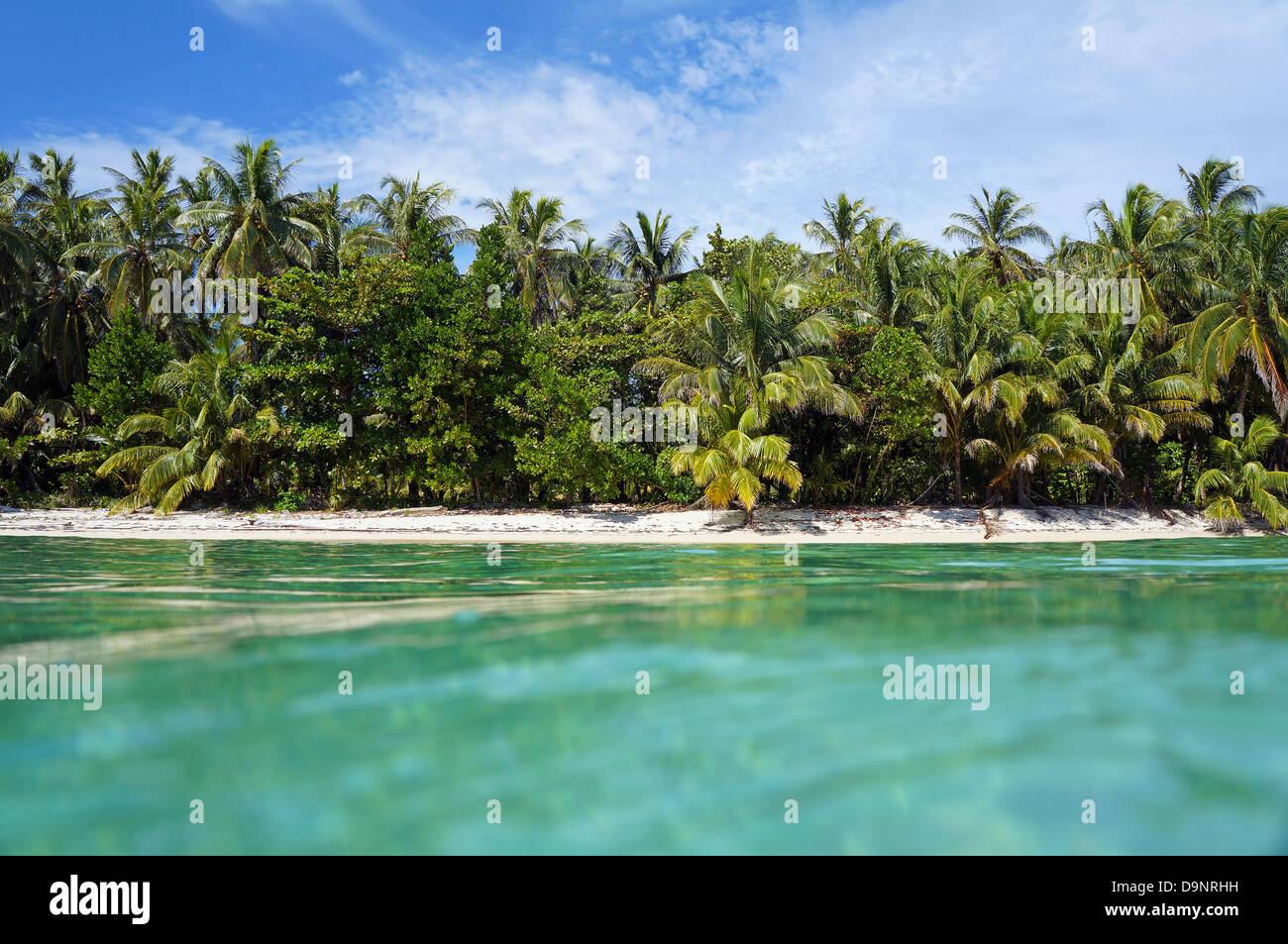 Vista dalla superficie dell'acqua su una spiaggia tropicale con vegetazione lussureggiante, Caraibi, Zapatillas Immagini Stock