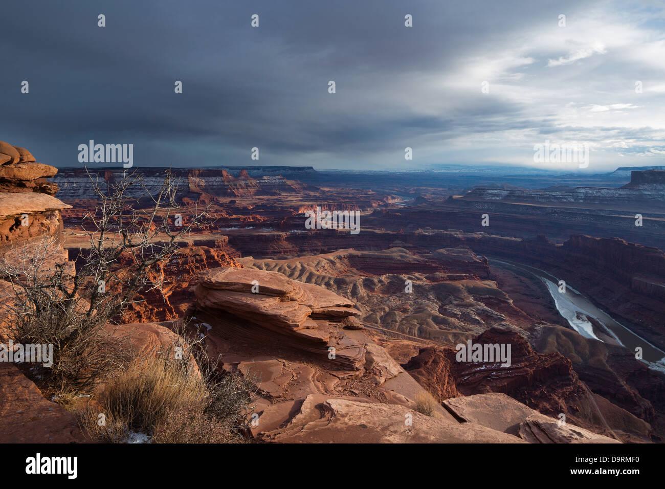 La Valle di Colorado dal Dead Horse Point, Utah, Stati Uniti d'America Immagini Stock