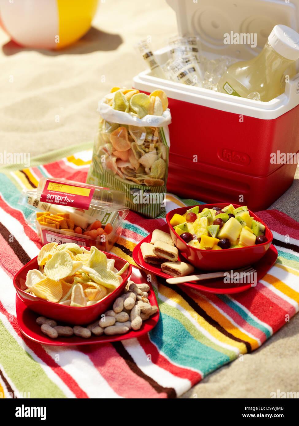 picnic sulla spiaggia Immagini Stock