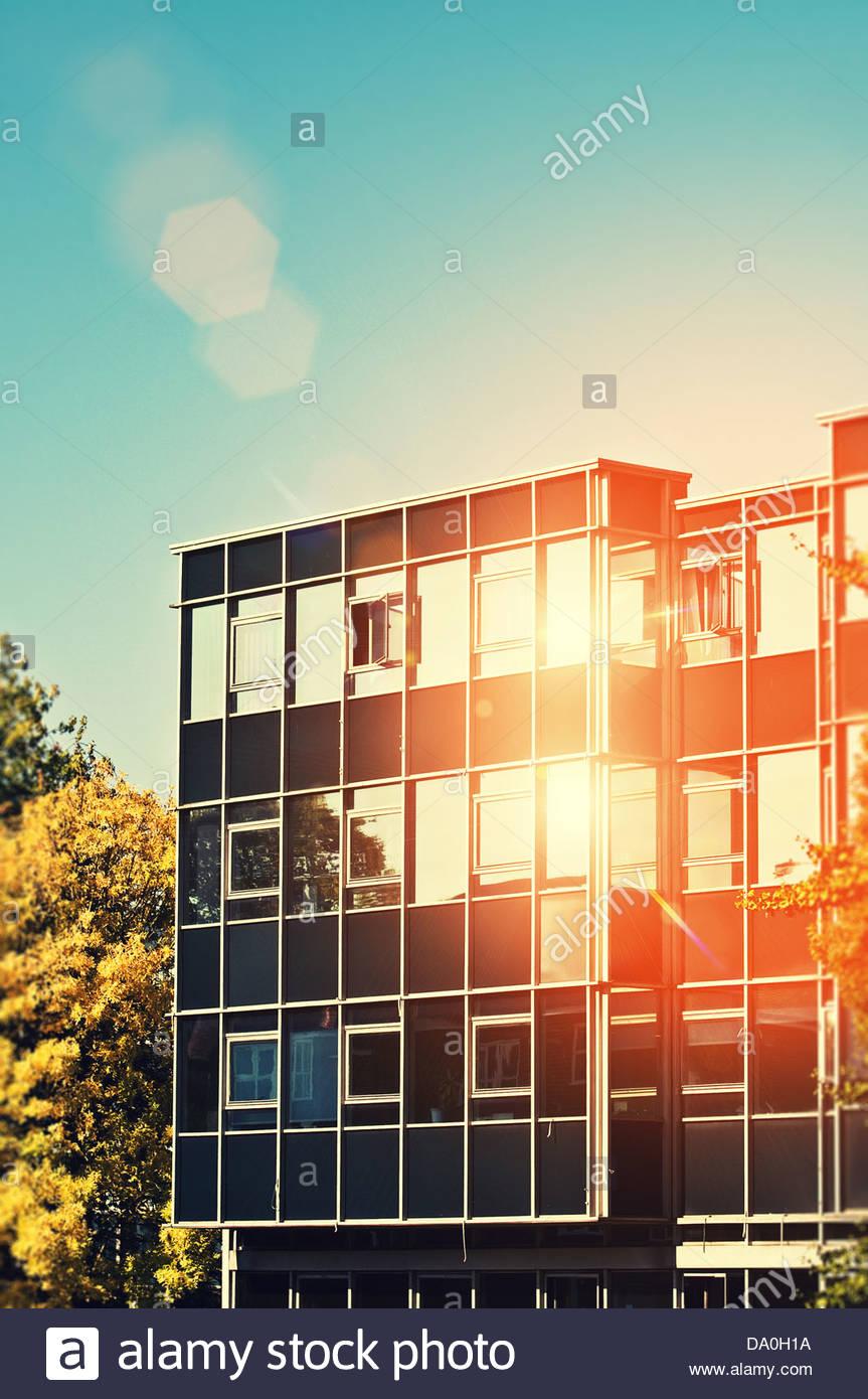Ufficio soleggiata Immagini Stock