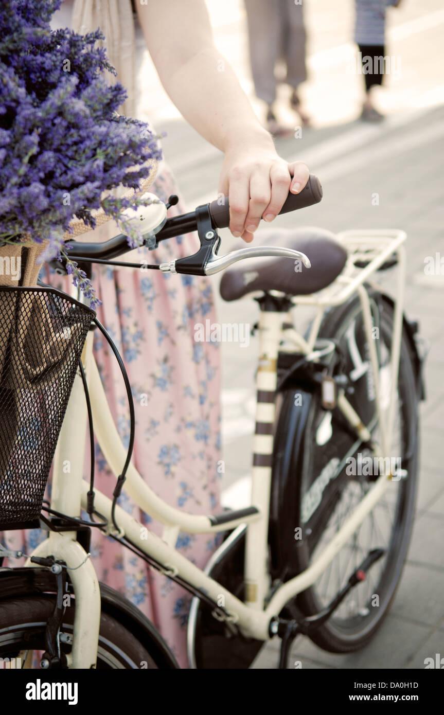 Donne azienda retrò bike con fiori di lavanda Immagini Stock