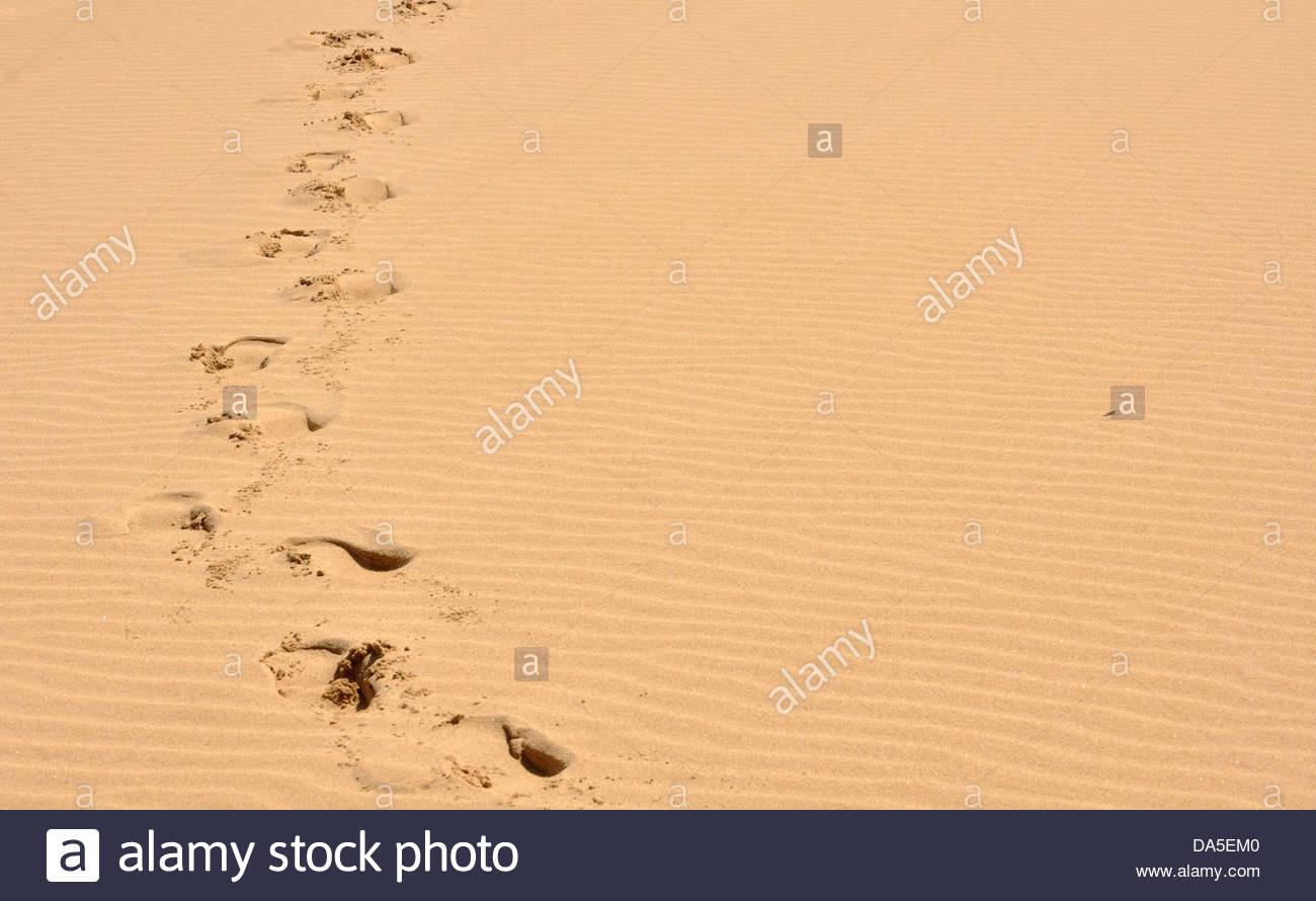 Impronte sulla spiaggia di La natura della Valle, sulla Garden Route, Western Cape, Sud Africa. Immagini Stock