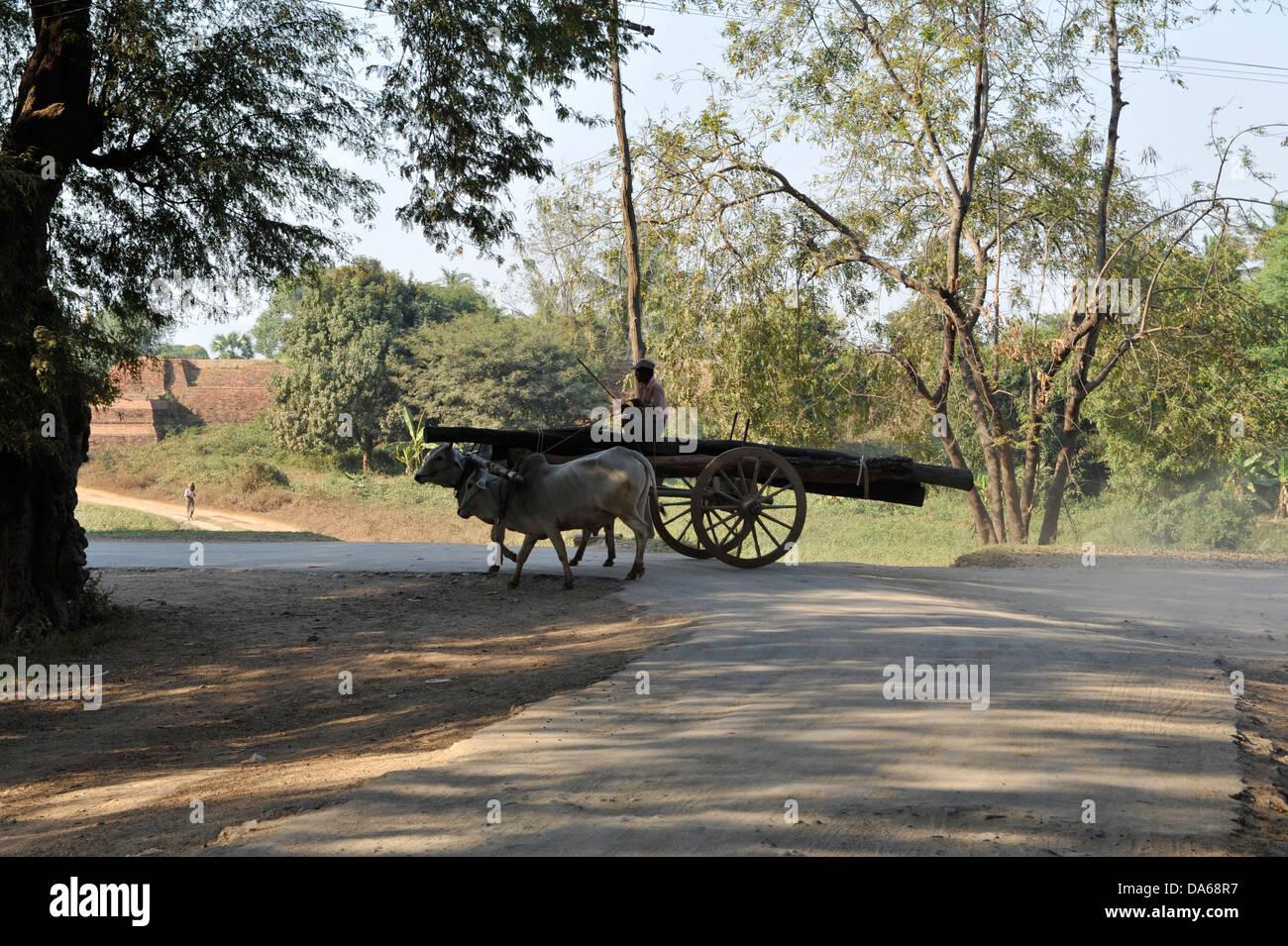 Carro trainato da cavalli che trasportano carichi Immagini Stock