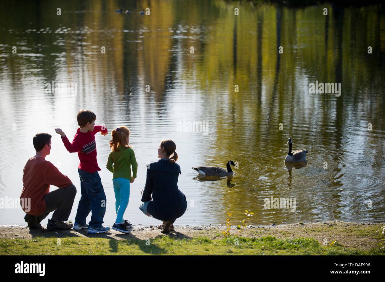 Famiglia nel parco di anatre di alimentazione Immagini Stock