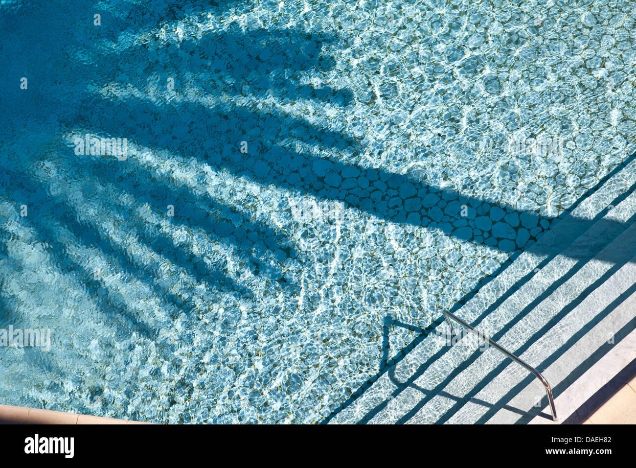 Piscina con Palm tree ombra in piscina. Immagini Stock