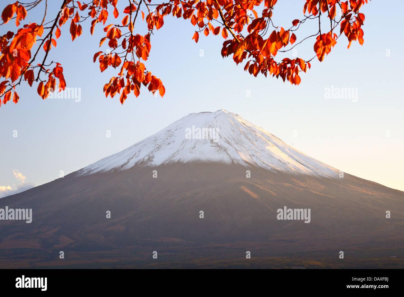 Mt. Fuji con i colori dell'Autunno in Giappone. Immagini Stock
