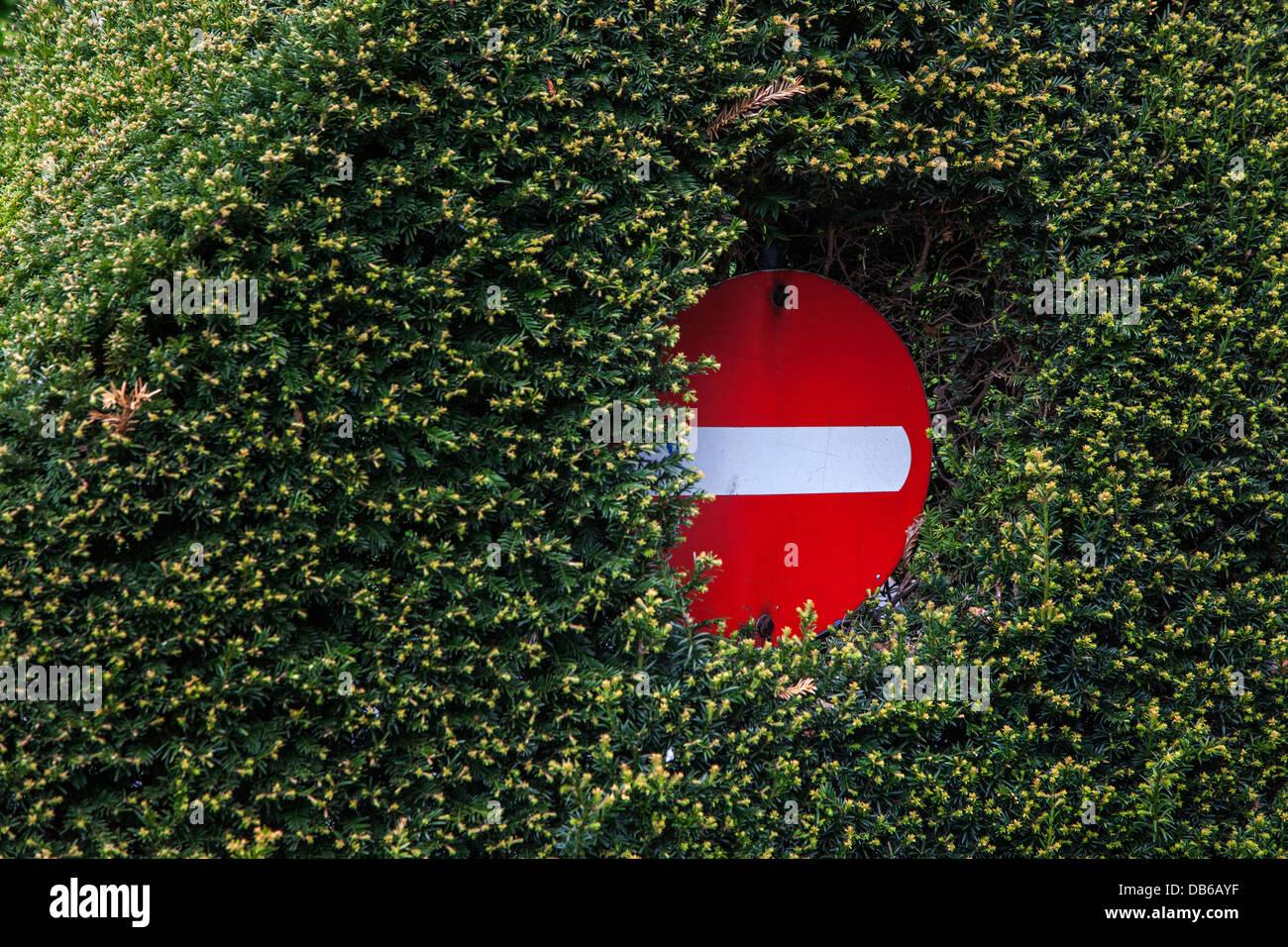 Appena visibile segno di traffico nascosti in una fitta vegetazione di hedge lungo la strada Immagini Stock