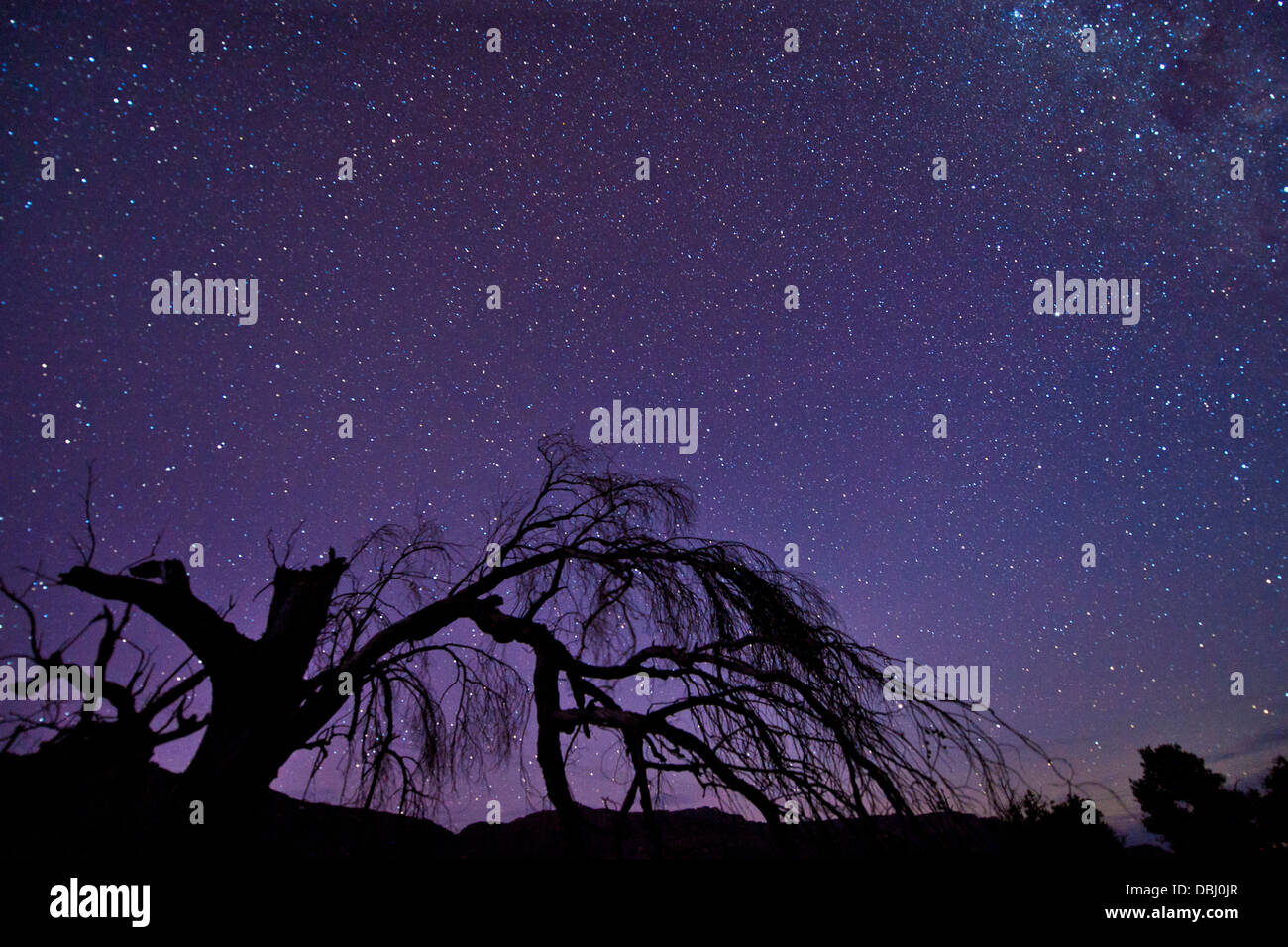 Vista delle stelle del Cederberg montagna in Sud Africa. Immagini Stock