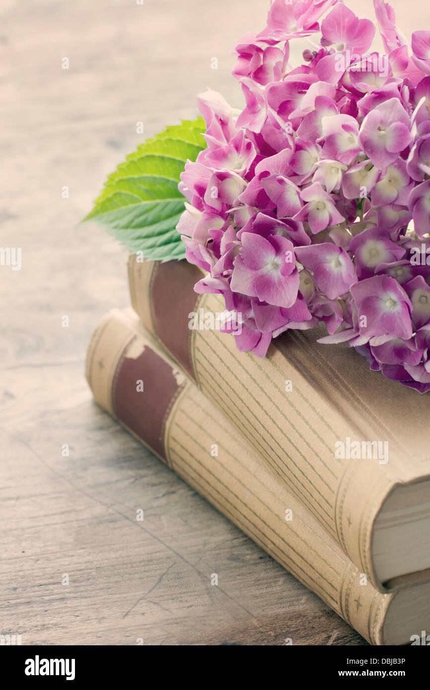 Libri Antichi Romantico Con Fiori Di Colore Rosa Su Sfondo Di Legno