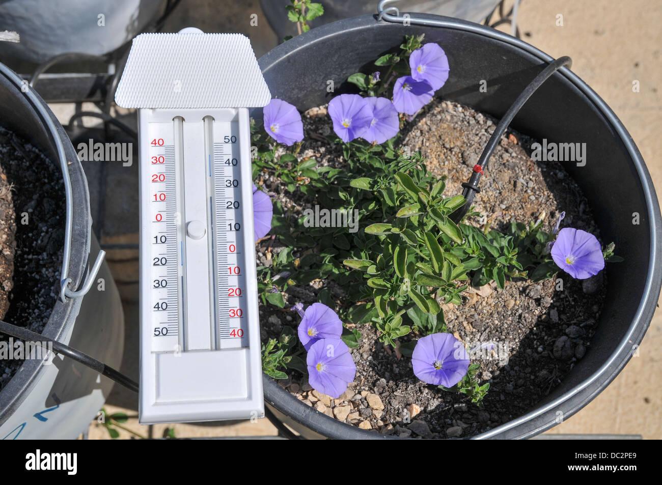 Termometro per misurare le temperature massima e minima in un dato tempo di ciclo Immagini Stock