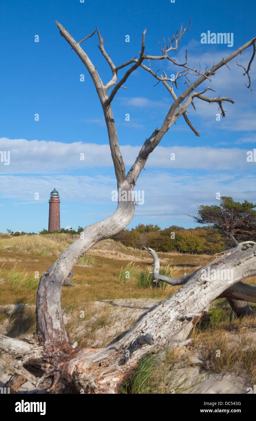 Europa, Deutschland, Meclenburgo-Pomerania,Fischland-Darss-Zingst,Prerow Lighthouse Darsser Ort Foto Stock