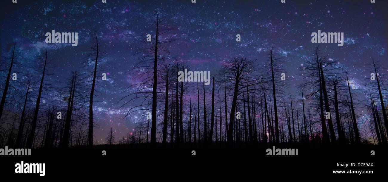 I cieli narrano la gloria di Dio. Il salmo 19:1 Immagini Stock