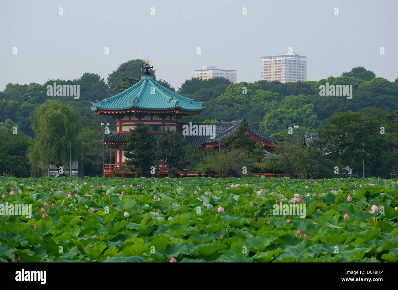 Tempio Bentendo, Tokyo Parco di Ueno Immagini Stock