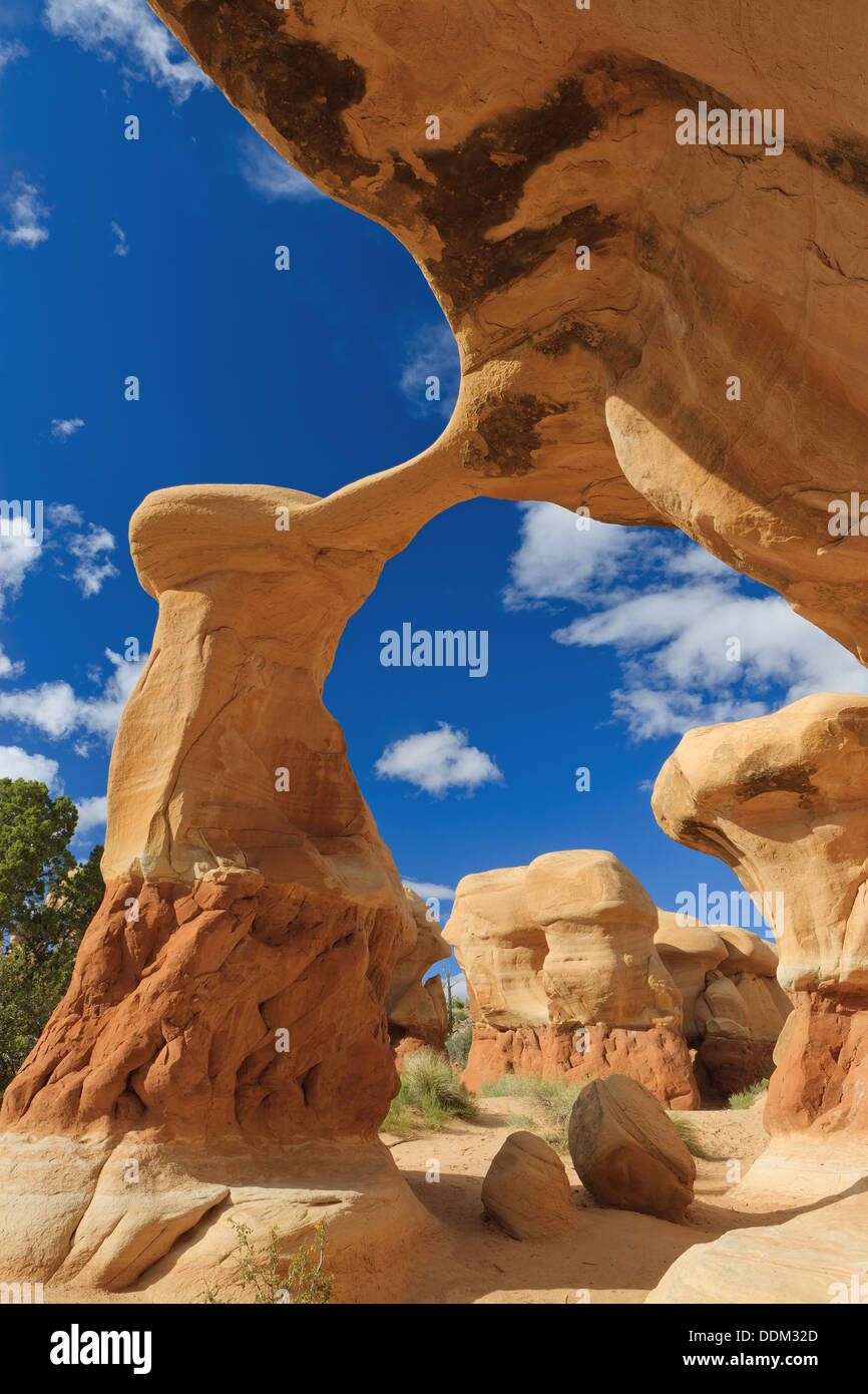 Metate Arch a Devils Garden vicino a Escalante, Utah, Stati Uniti Immagini Stock