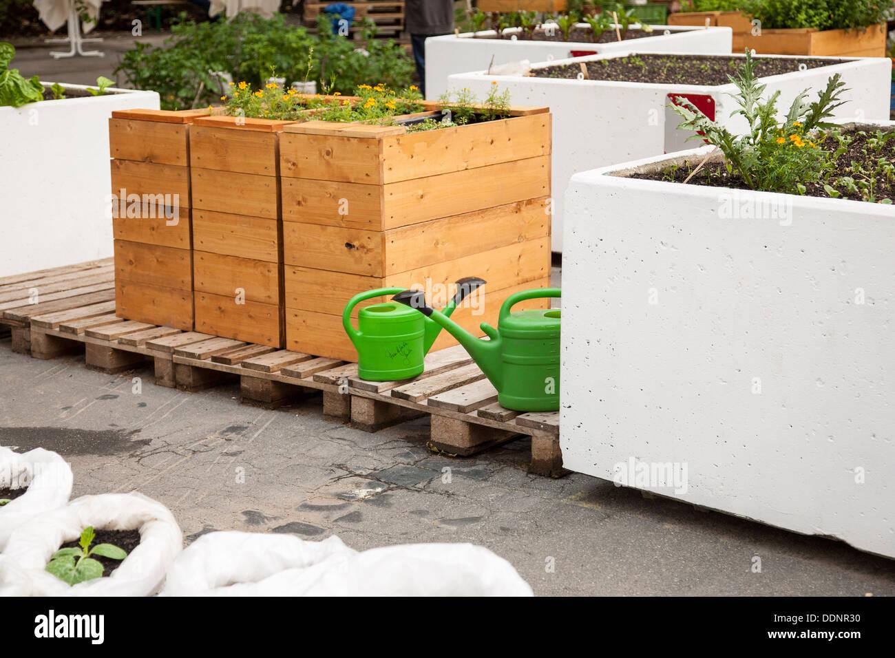 Il giardinaggio urbano, Frankfurt am Main, Hesse, Germania, Europa Immagini Stock