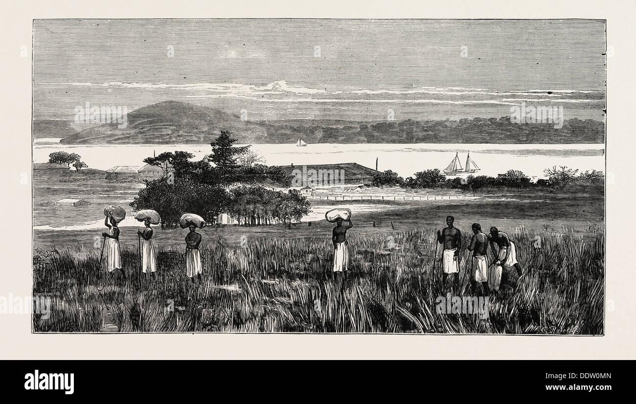 Un inglese un insediamento commerciale a EMBOMA, fiume Congo, Costa DELL AFRICA Immagini Stock