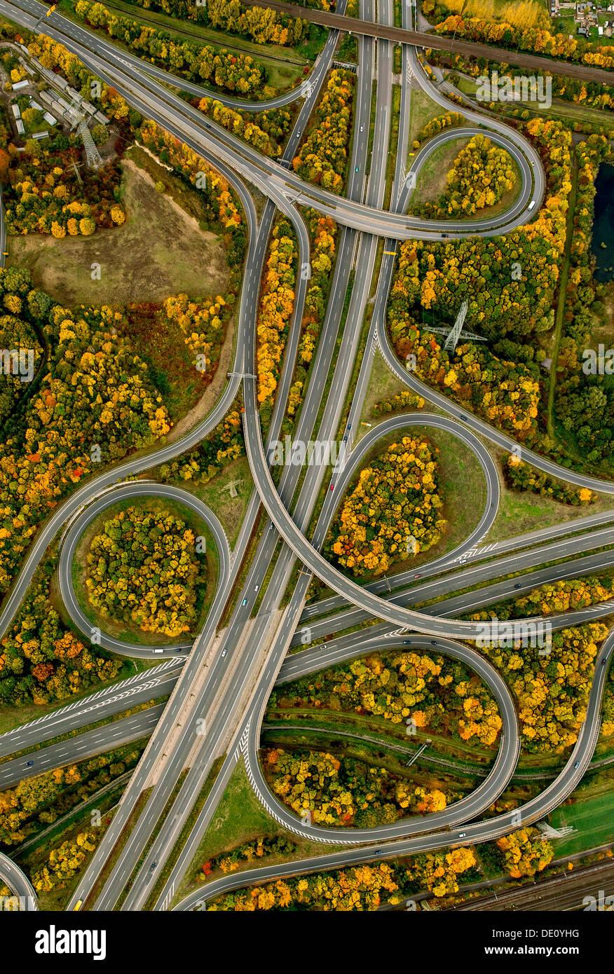 Vista aerea, Springorumknoten svincolo della superstrada e Bundesstraße 236N autostrada, autunno, Dortmund, regione della Ruhr Immagini Stock